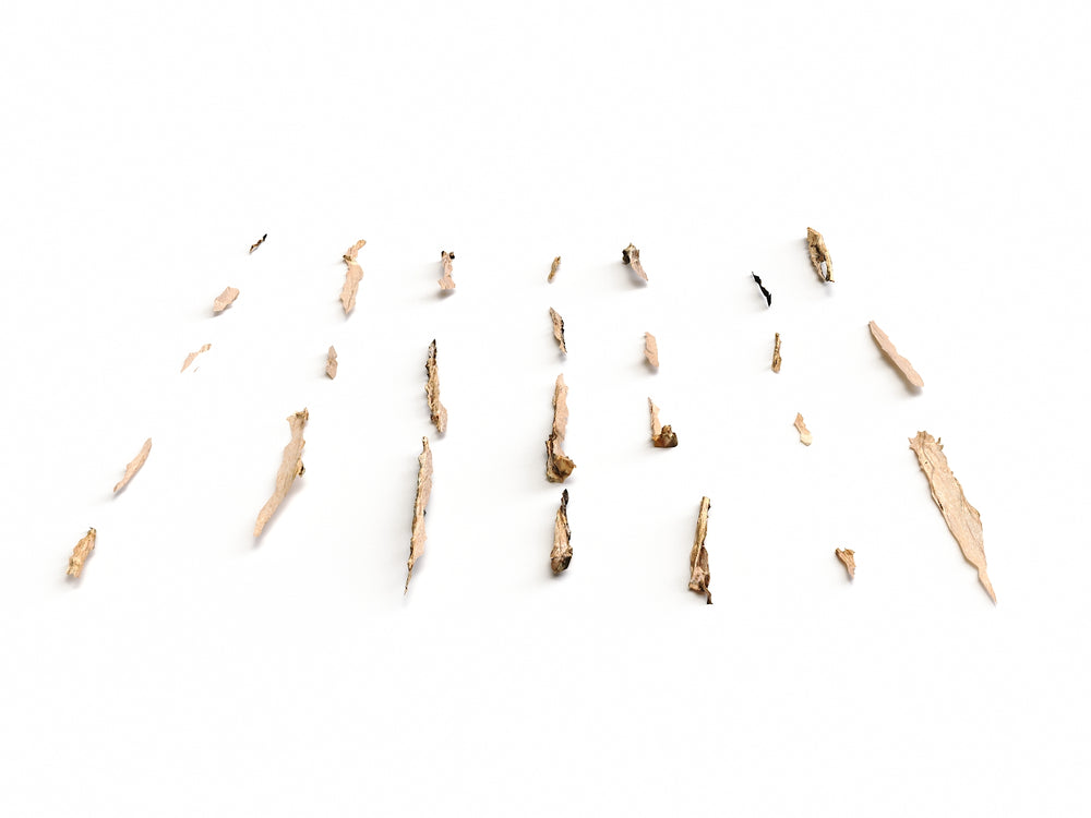 Wood Chunks Set - Nouvelle Mesure Lab