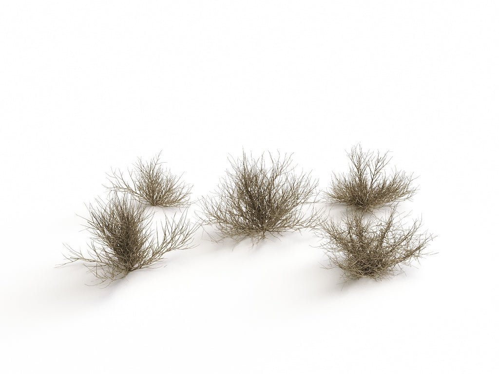 Desert Bush Set - Nouvelle Mesure Lab