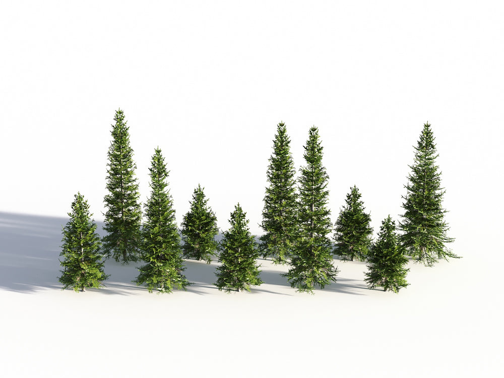Load image into Gallery viewer, Low Poly Fir Tree Set - Nouvelle Mesure Lab