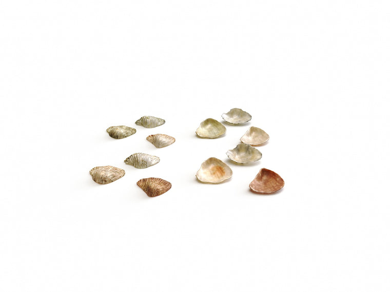 Sea Shell Set