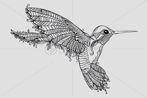 Humming Bird- Creative Linear Graphic