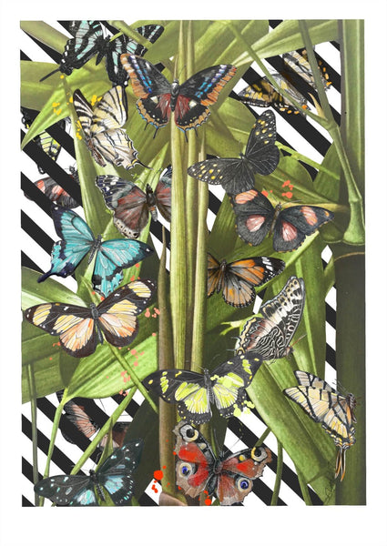 Butterfly Tropicana A4 Print