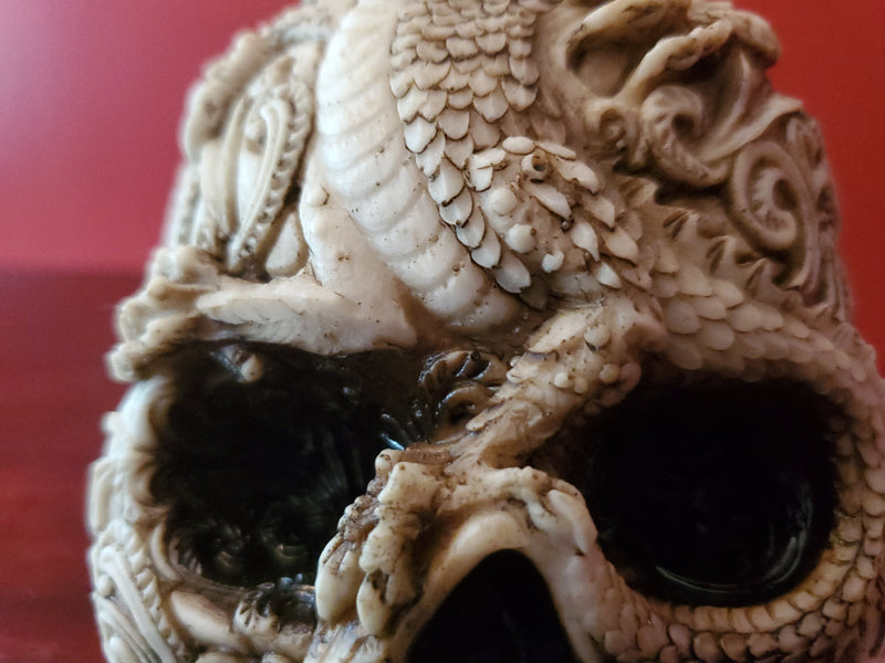 detailed dragon skull