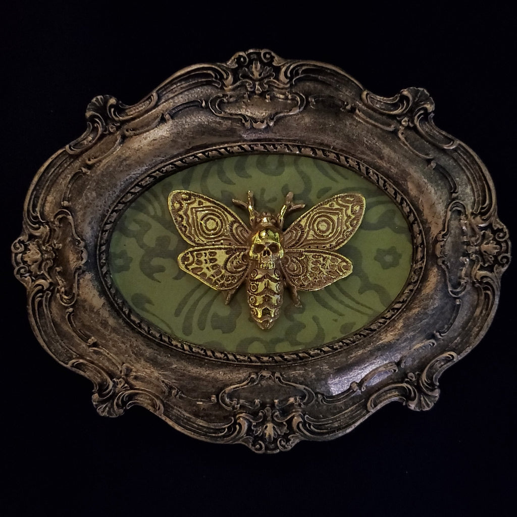 darkothica gothic moth plaque moth wall frame gothic decor moths skulls