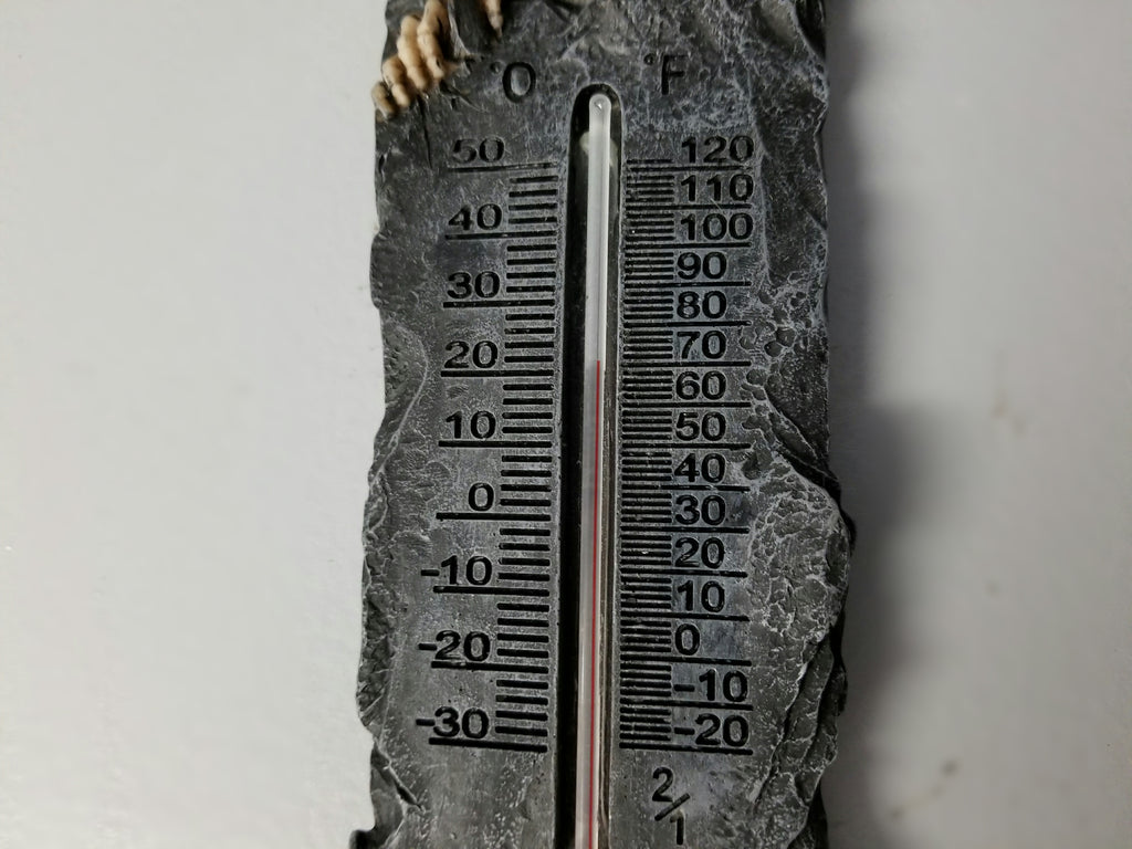 Skull Thermometer