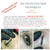 Advanced Eyeliner Techniques - June 27th & 28th, 2019 - San Antonio, TX