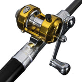 Compact Mini Fishing Rod and Reel Set