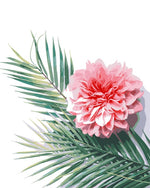 Palm Leaves And Pink Flower DIY Oil Painting By Number Kit In 40x50cm
