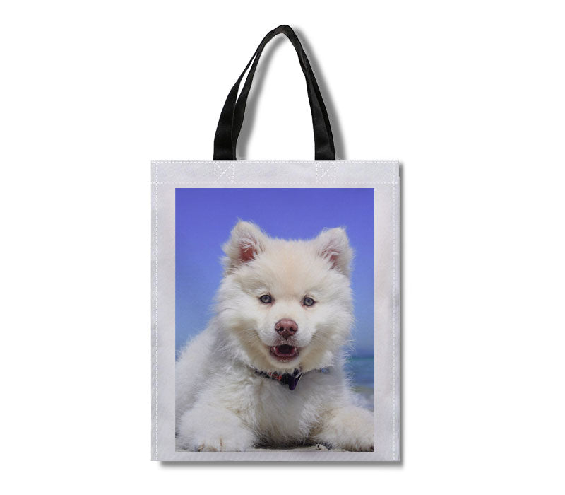 Customized Lightweight Reusable Shopping Bag
