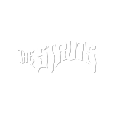 THE STRUTS CAR WINDOW STICKER