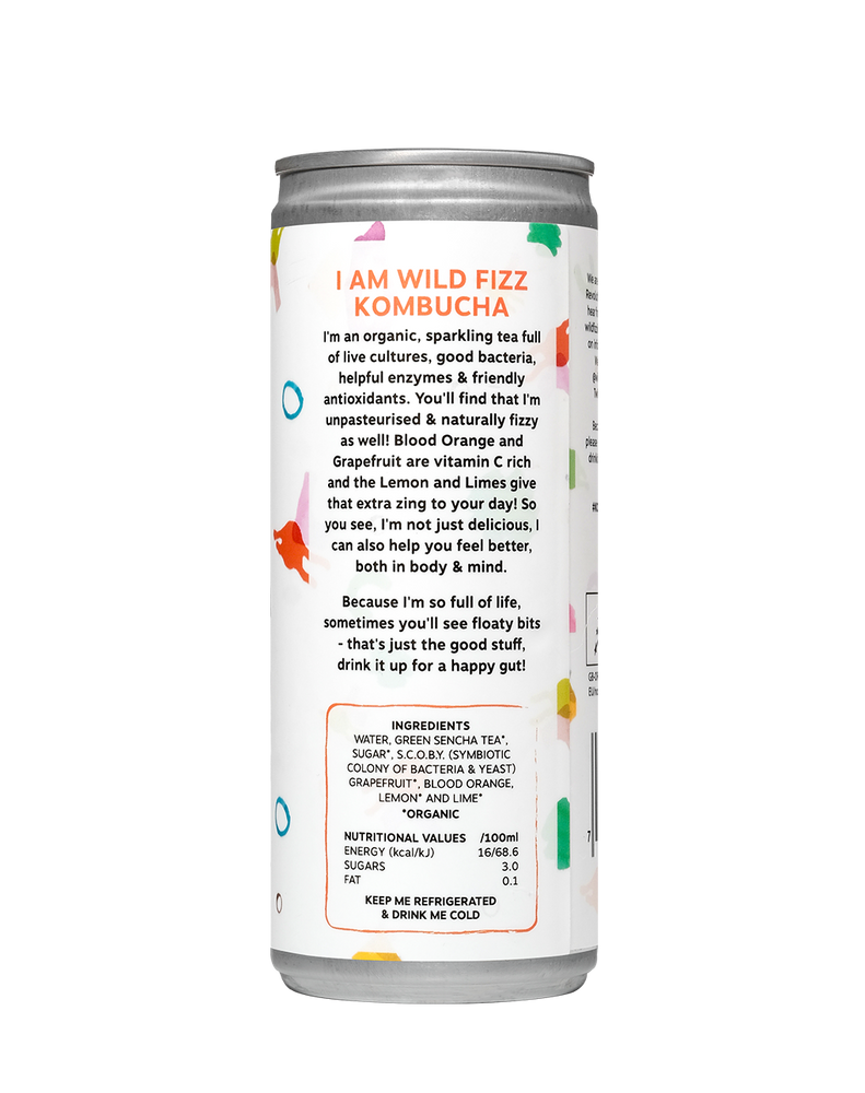 Blood Orange (Case of 12) - Wild Fizz Kombucha brewed in London