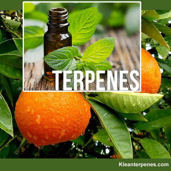 Mr Terpenes New Channel Coming Soon!!!!