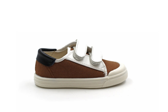 Pepe Canvas Coffee Sneaker