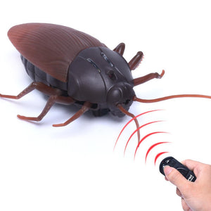 High Simulation Remote Cockroach