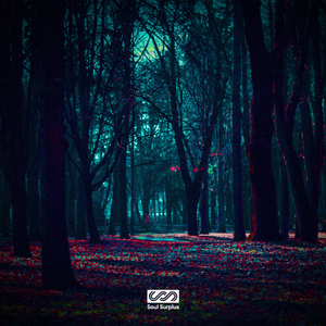 Dark Forest (Sample Pack)