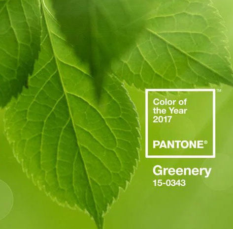Greenery : la couleur Pantone 2017