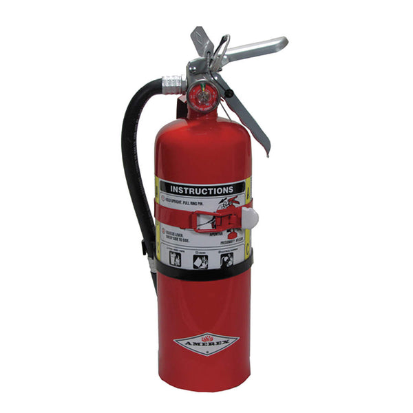Dry Chemical Fire Extinguisher with 5 lb. Capacity and 14 sec. Discharge Time - addinstock