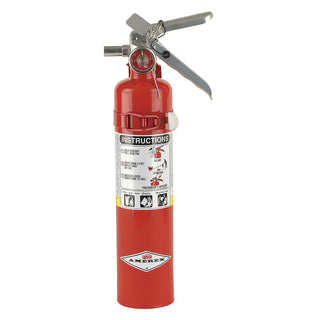 Dry Chemical Fire Extinguisher with 2.5 lb. Capacity and 10 sec. Discharge Time - addinstock
