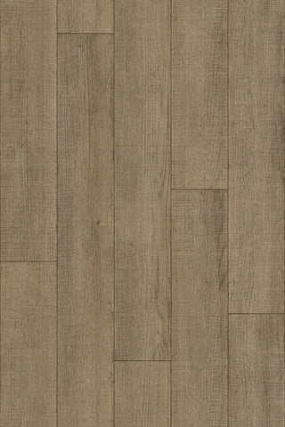 Brushed Wood B296L  - Sheet Vinyl - PIETRO