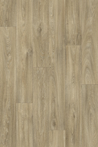 Havanna Oak B699L  - Sheet Vinyl - PIETRO