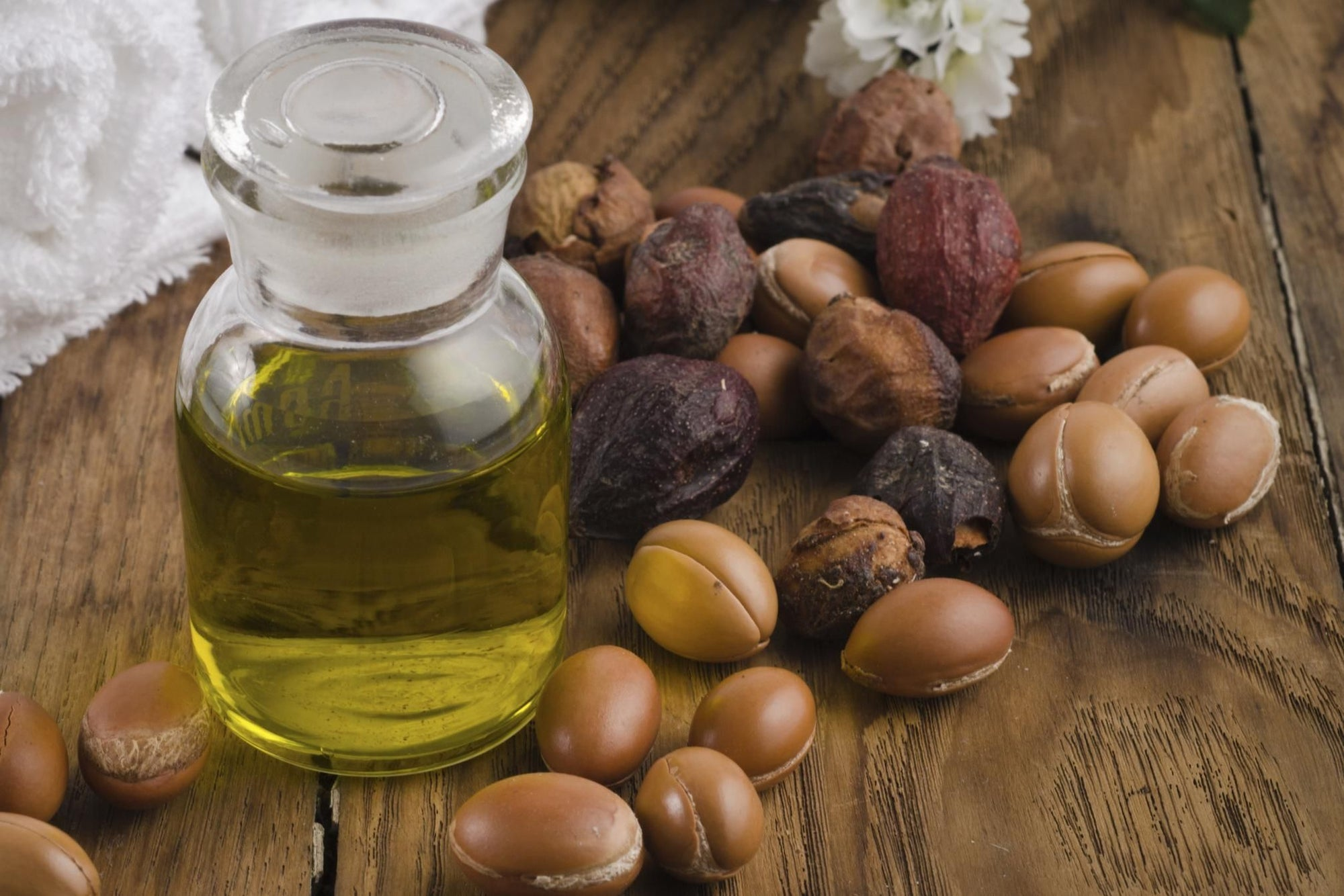 Argan Oil Women Cooperatives and Their Benefits