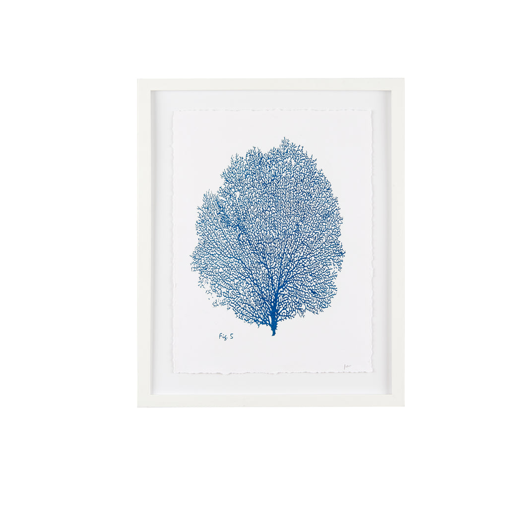 Sea Fan Fig. 5 Blueprint