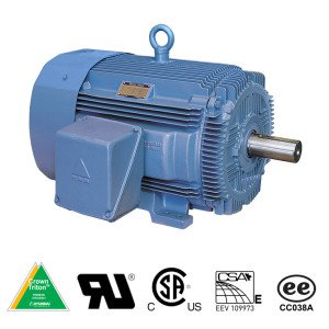 Hyundai Crown Triton Series TEFC Enclosure Rigid Base Three Phase Motors 1 HP 1200 RPM 145T Frame