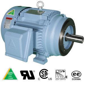 Hyundai Crown Triton Series TEFC Enclosure C-Face Rigid Base Three Phase Motors 2 HP 1800 RPM 145TC Frame