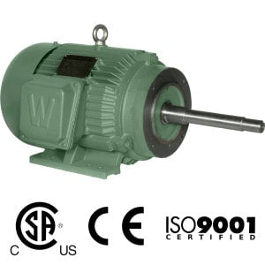Worldwide Close Coupled TEFC Enclosure C-Face Rigid Base Three-Phase Motors 2 HP 1800 RPM 145JM Frame