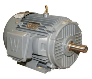 Worldwide Severe Duty TEFC Enclosure Rigid Base Three-Phase Motors 2 HP 1200 RPM 184T Frame