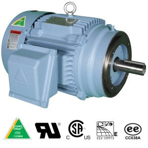 Hyundai Crown Triton Series TEFC Enclosure C-Face Round Body Three Phase Motors 3 HP 1800 RPM 182TC Frame