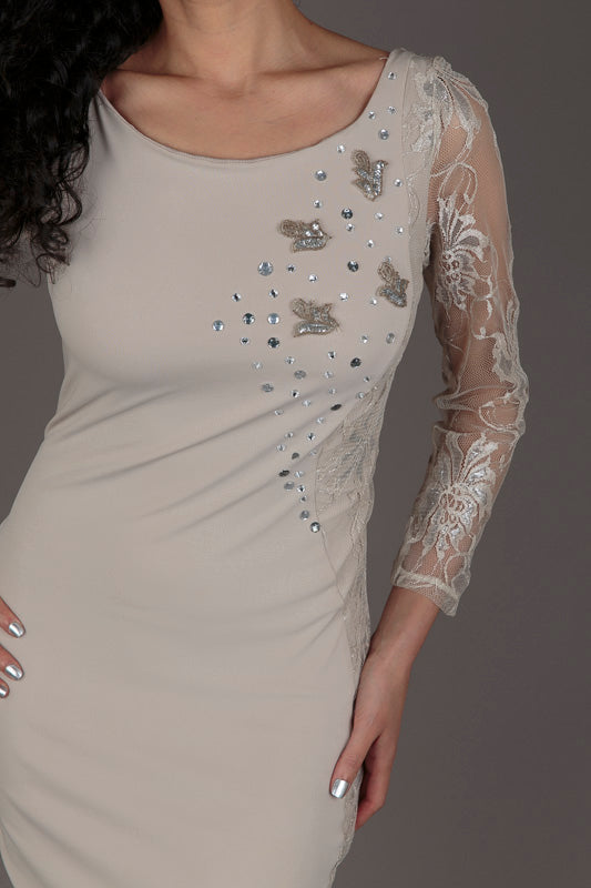Halo Nude Lace Detail Cocktail Dress