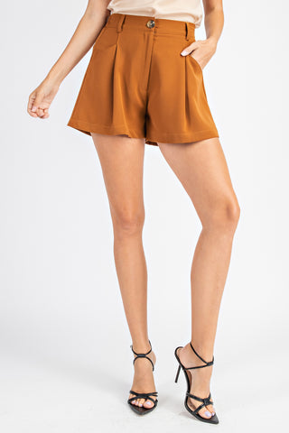 Pleated High Waist Shorts - Camel(A)