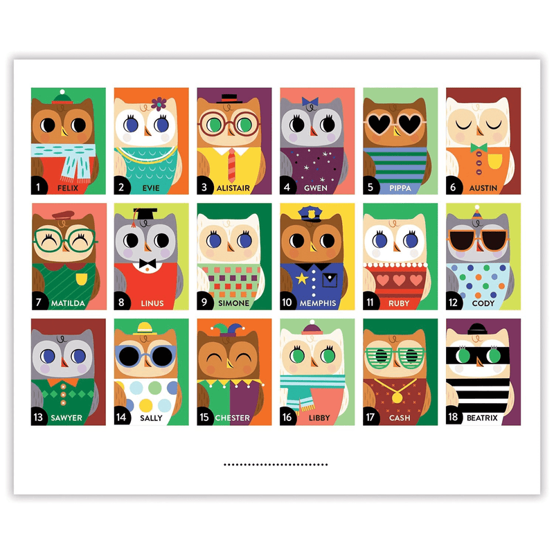 Owls And Foxes Guess Whooo? Guessing Games Mudpuppy