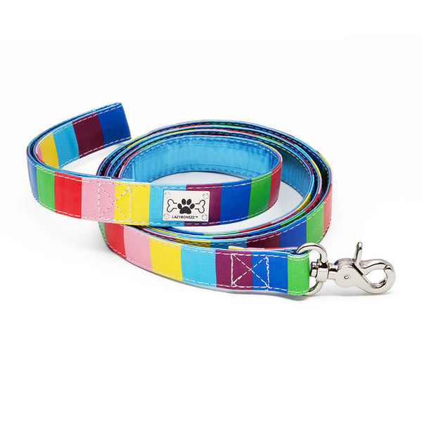 Multicolor Dog Leash