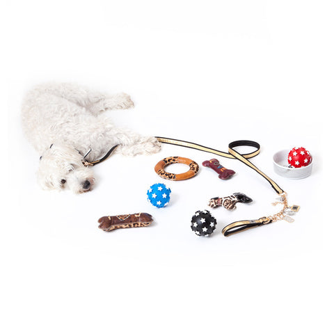 Small Leather Dog - Pet Toy