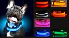 Glow LED Safety Dog Collar