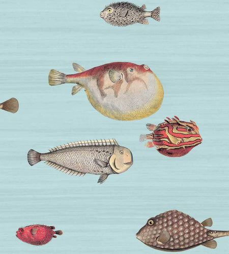 Acquario Wallpaper by Fornasetti and Cole & Son for AUTHOR