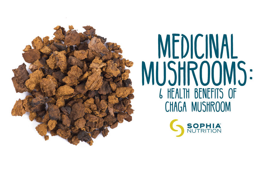 Medicinal Mushrooms: 6 Health Benefits Of Chaga Mushroom