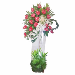Red Anthurium Spray