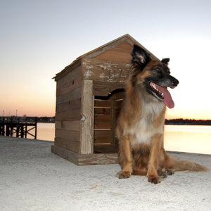 reclaimed cedar wood st augustine florida old town timber custom dog house pet