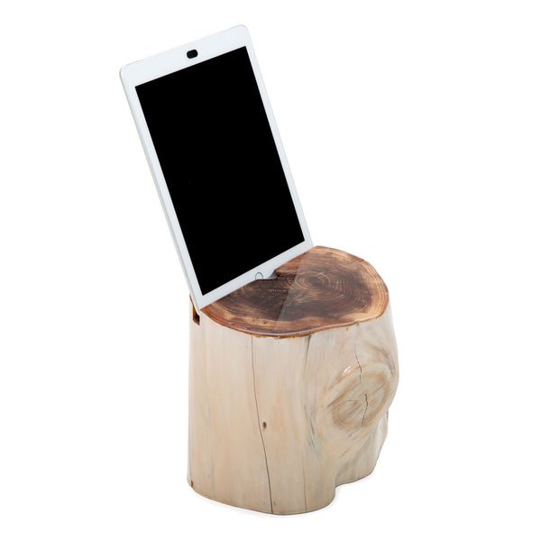 Whitewashed Stump iPad Holder