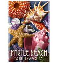 Myrtle Beach South Carolina Seashells Lantern Press Postcard