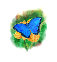 Vivid Blue Morpho Butterfly Lantern Press Postcard