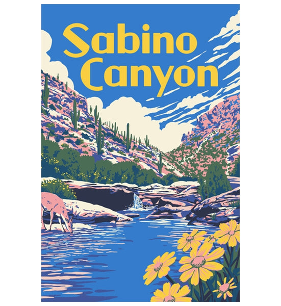 Sabino Canyon Arizona Lantern Press Postcard