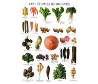 Root Vegetables - Nouvelles Images Multiples Ateleir Postcard