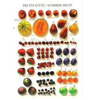 Summer Fruit - Nouvelles Images Multiples Atelier Postcard