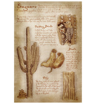 Da Vinci Saguaro Cactus Lantern Press Postcard