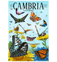 Butterflies Cambria California Lantern Press Postcard