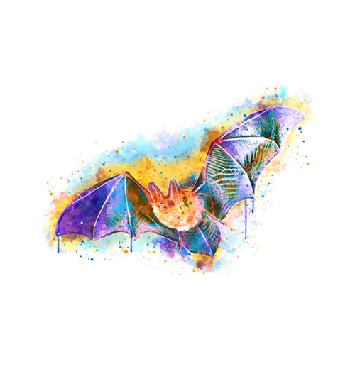 Halloween Vivid Bat Lantern Press Postcard